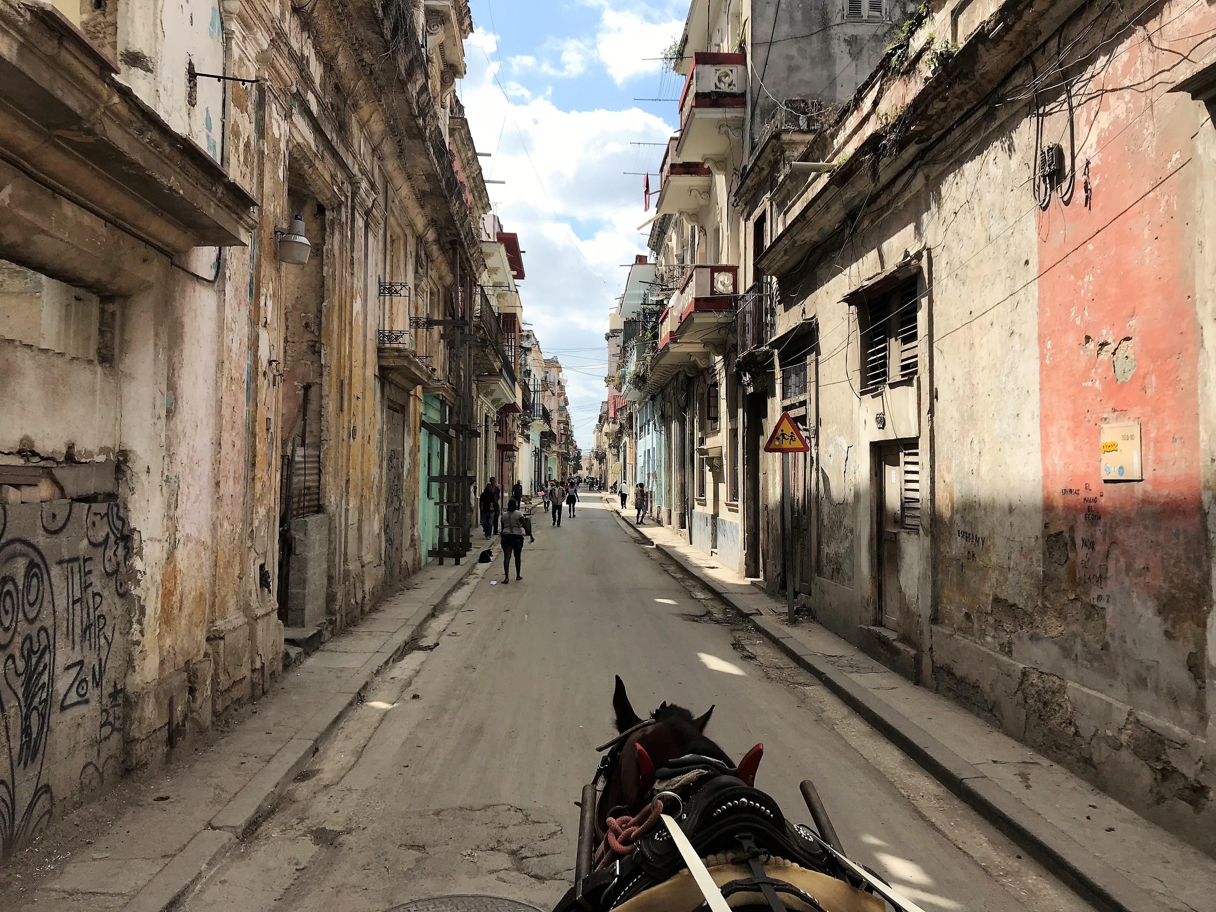Vuelta en carruaje a caballo