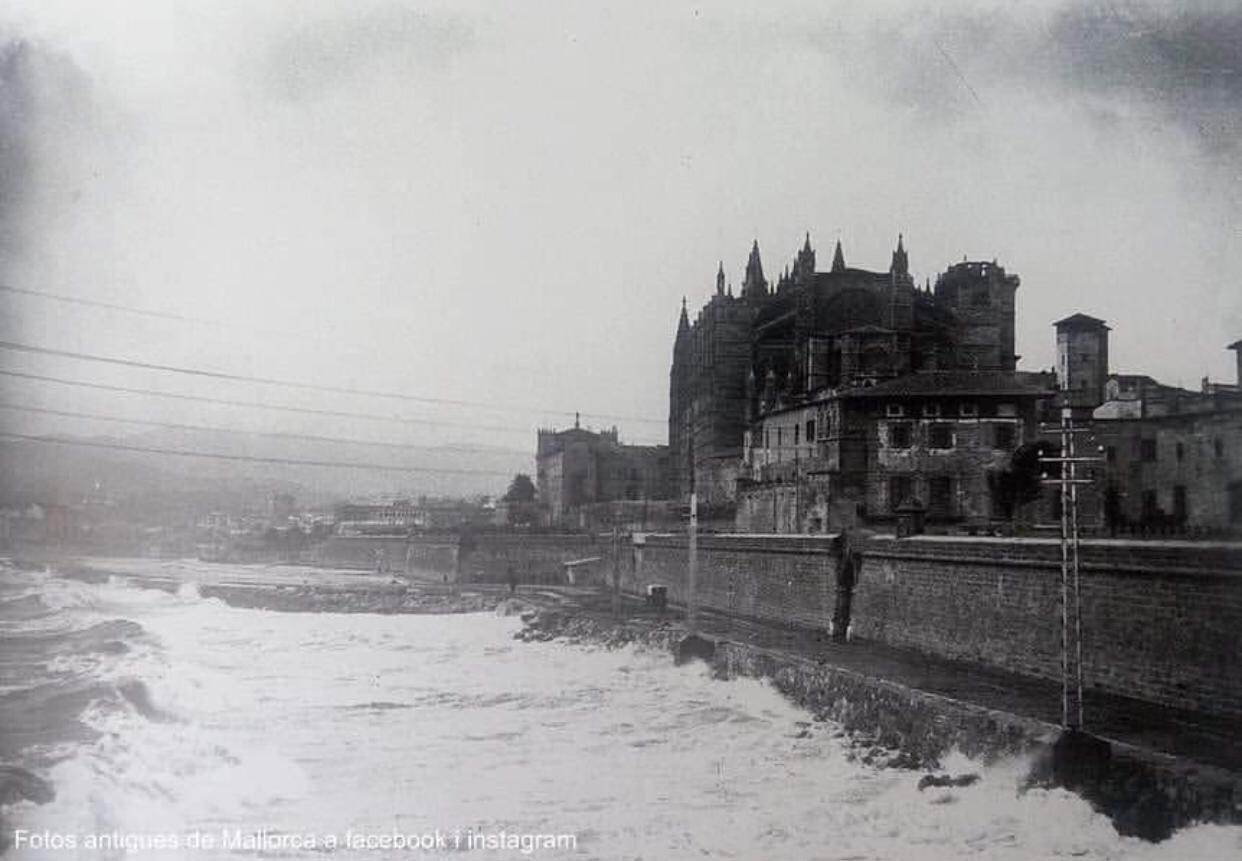 catedral mallorca - la cadena viajera